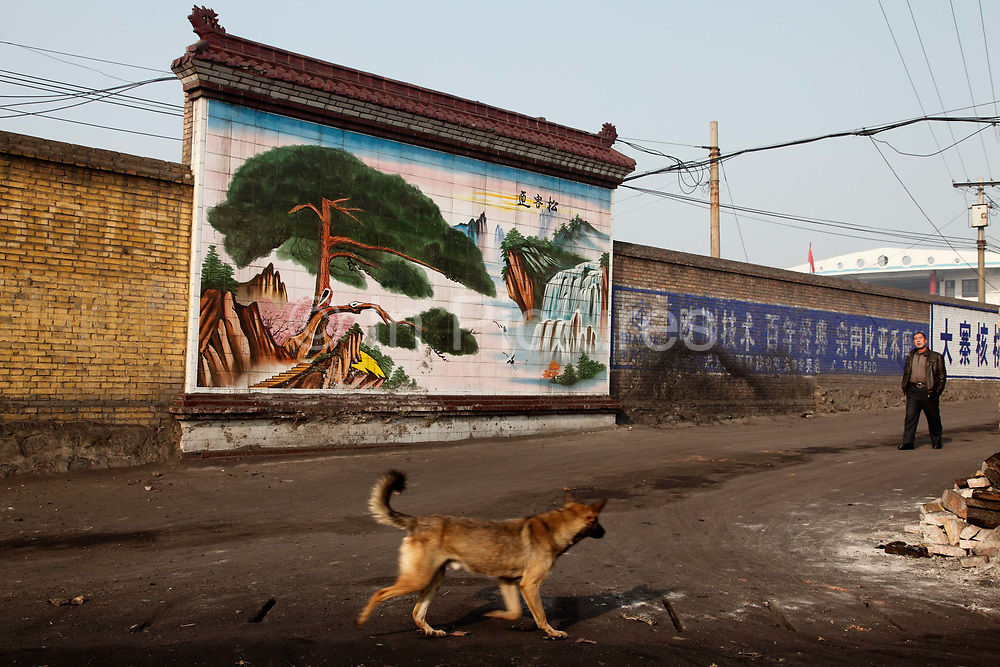 A dog walks past a wall mural showing a beautiful Chinese landscape in Linfen, Shanxi Province, China on Thursday, 03 December, 2009. Linfen is one of the most polluted cities in the world as it turns readily available coal from the surrounding regions into coke that powers the steel mills.  Due to the heavy presence of coal mines and related industries, Linfen was named the world's most polluted city from 2004-2007.