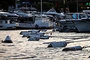 2020 Rolex Circuito Atlántico Sur<br /> © Matias Capizzano