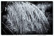 Maidenhead BERKS. UK.   Boulters Lock and Raymead Island 09:17:03  Sunday  11/09/2016<br /> [Mandatory Credit; Peter SPURRIER/Intersport Images]