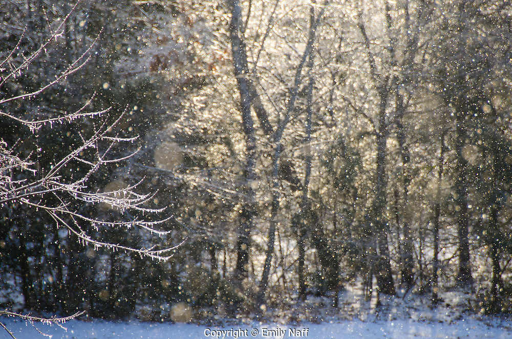 Magic light on a snowy icy morning