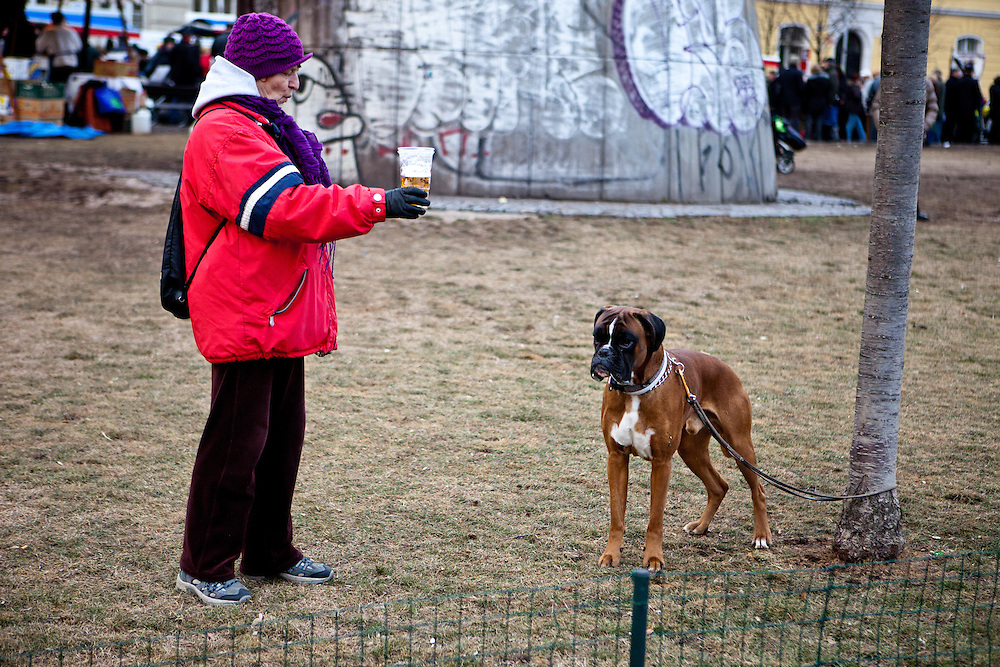 Woman with a beer cheering to a dog in Prague Zizkov during a carnival event.