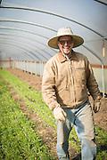 Environmental portrait of Bryan Dickerson inside green house.
