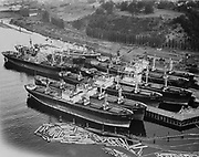 Ackroyd 05366-1 Northwest Marine Iron Works. Aerial of ships in old Portland drydock. St. Johns. July 20, 1954. (Willamette Cove, next to SP&S railroad bridge)