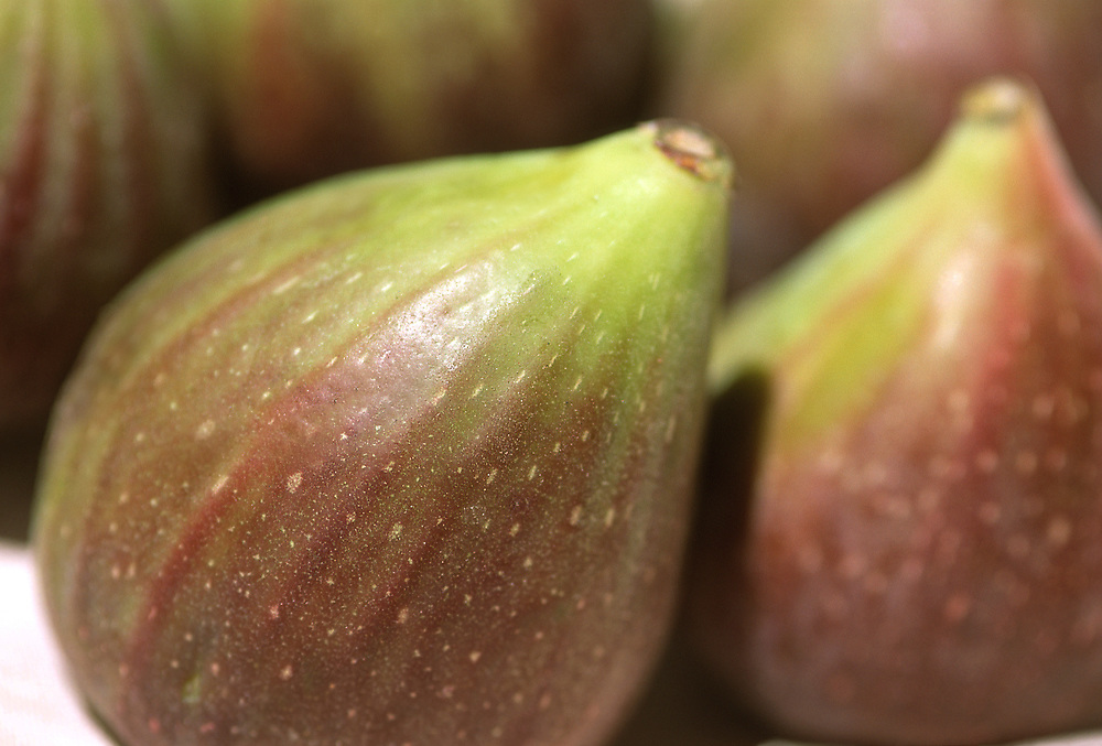 Close up selective focus photograph of a group of Brown Turkey Figs