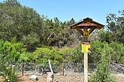 San Joaquin Marsh Reserve Pollinator Habitat