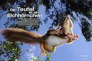 Publication: NATUR + KOSMOS (Germany), October 2010;.Photography by Heidi & Hans-Jürgen Koch/animal-affairs.com