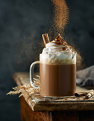Hot Chocolate with whipped cream sprinkled with cocoa powder.