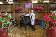 Lucy Mae from Dexters Cattle at the annual Suffolk Show on the 29th May 2019 in Ipswich in the United Kingdom. The Suffolk Show is an annual show that takes place in Trinity Park, Ipswich in the English county of Suffolk. It is organised by the Suffolk Agricultural Association.