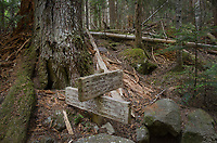 Trail signs along Chilliwack River Valley, North Cascades National Park