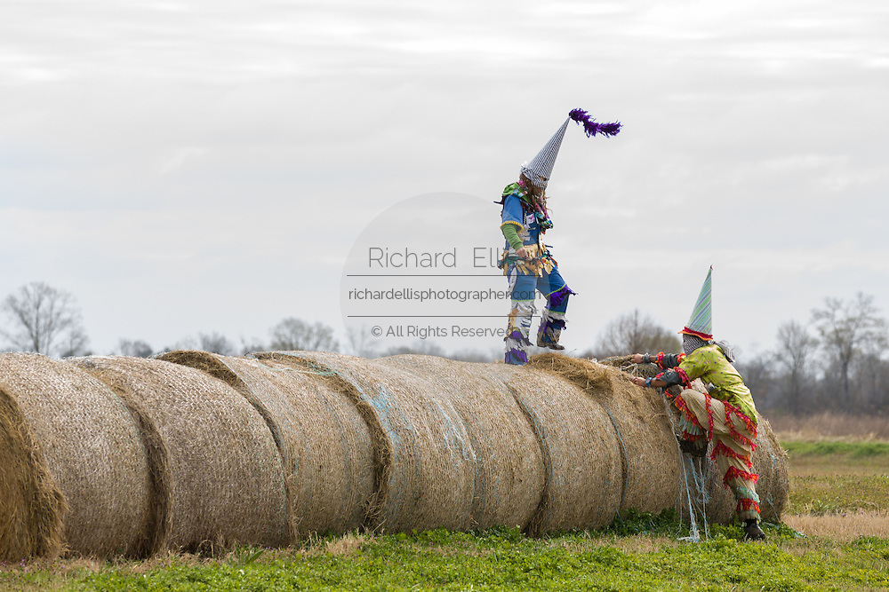 Costumed revelers climb onto hay bales during the Faquetigue Courir de Mardi Gras chicken run on Fat Tuesday February 17, 2015 in Eunice, Louisiana. The traditional Cajun Mardi Gras involves costumed revelers competing to catch a live chicken as they move from house to house throughout the rural community.