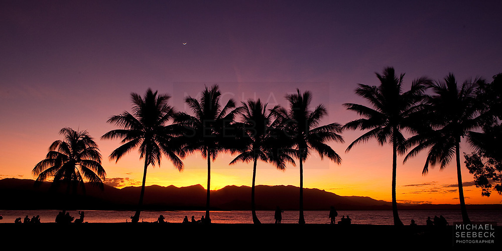 Sunset twilight with the coconut palms silhouetted across the inlet at Port Douglas.<br /> <br /> Open Edition Print and available as a Stock Image.
