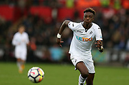 Tammy Abraham of Swansea City in action. Premier league match, Swansea city v Leicester city at the Liberty Stadium in Swansea, South Wales on Saturday 21st October 2017.<br /> pic by  Andrew Orchard, Andrew Orchard sports photography.