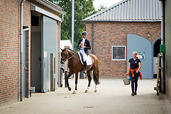 Minderhoud Hans Peter, NED, In Style<br /> WK Ermelo 2019<br /> © Hippo Foto - Sharon Vandeput<br /> 4/08/19