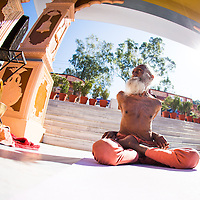 YOGIS - Personal Galleries