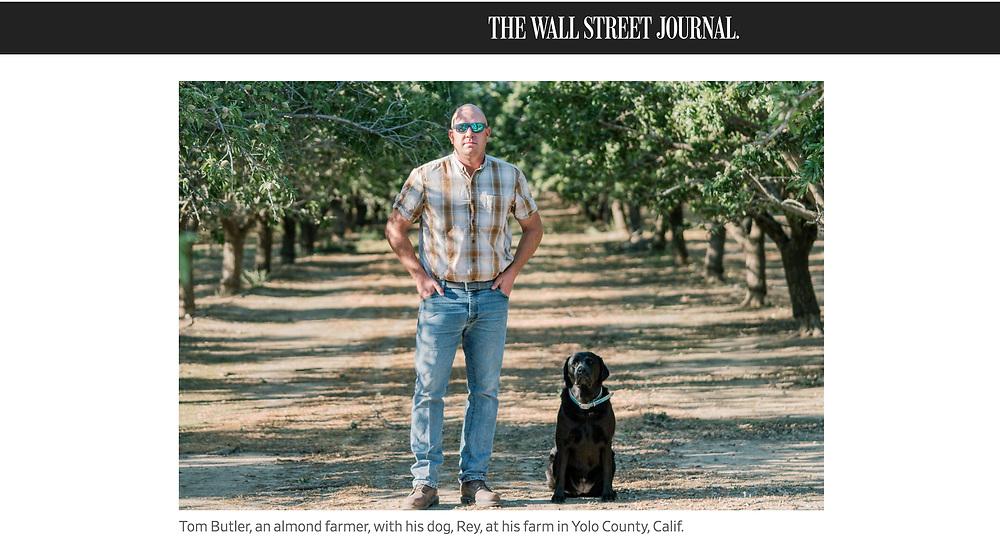 Tear Sheet for the Wall Street Journal<br /> <br /> https://www.wsj.com/articles/drought-imperils-economy-in-californias-farm-country-11621589407?st=enr0yc9vwpwrsju&reflink=desktopwebshare_permalink#comments_sector