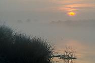 Misty fog at sunrise along Middle River, Bacon Island, San Joaquin County, Sacramento-San Joaquin River Delta, California