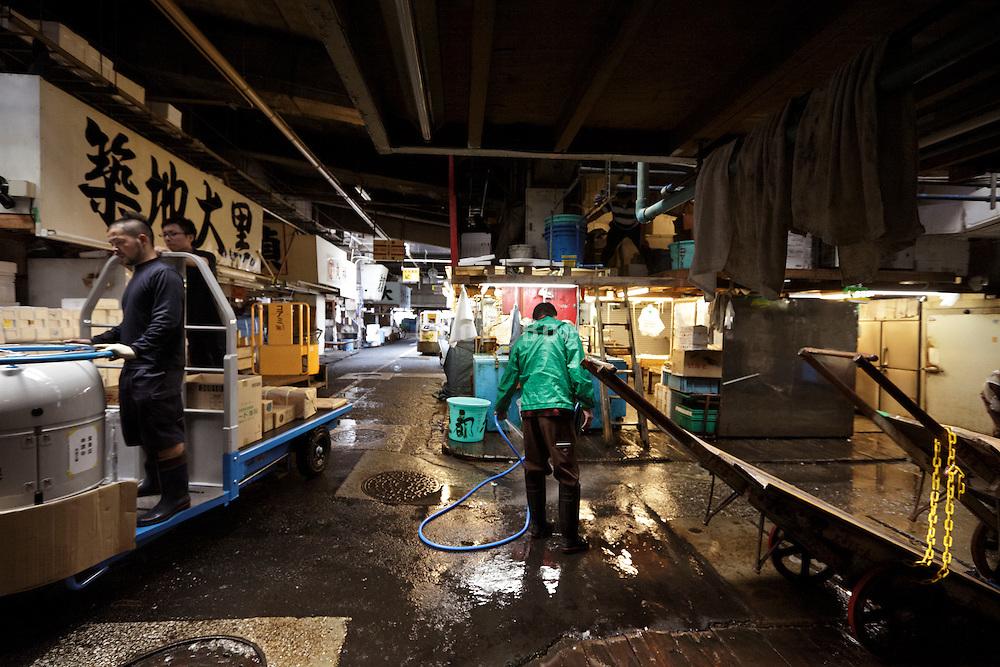 end of day, sorting and distribution area at Tsukiji Wholesale Fish Market,  Tokyo, Japan.