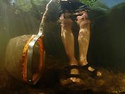 Jürgen Schreiber untersucht das Makrozoobenthos. Um die Organismen in seinen Kescher zu treiben, wirbelt er das Sediment Stromaufwärts auf. So gelangen die Tiere mit dem Sediment in den Kescher. (Experte für Makrozoobenthos mit Großkrebsen)
