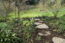 Stepping stone path through woodland area in early spring<br /> Design: Mary Keen