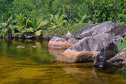 24.07.2015, Insel Praslin, SYC, auf den Seychellen, im Bild Brackwasserlagune am Anse Lazio am Abend // Holiday on the Seychelles at the Insel Praslin, Seychelles on 2015/07/24. EXPA Pictures © 2015, PhotoCredit: EXPA/ Eibner-Pressefoto/ Schulz<br /> <br /> *****ATTENTION - OUT of GER*****