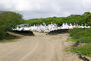 Cemetery Photographed on Santa Cruz Island, Galapagos, Ecuador