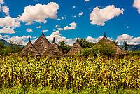 Tribal village near Blue Nile Falls (Tis Abay), Ethiopia.