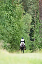 Townend Oliver (GBR) - Black Tie <br /> Cross Country <br /> CCI4*  Luhmuhlen 2014 <br /> © Hippo Foto - Jon Stroud