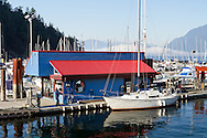 Man pulling his sailboat into the dock at Sewell's Marina.  Photographed from the Horseshoe Bay Public Dock at Horsehoe Bay in West Vancouver, British Columbia, Canada.