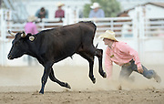 A steer runs off after Chisum Docheff misses grabbing on to it during the CPRA Rodeo at the Boulder County Fairgrounds on Sunday. Go to timescall.com for more photos.<br /> <br /> Matthew Jonas / Staff Photographer Aug. 2, 2015