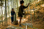 Apatani tribal elders Atta Yadd and her husband Ba Khang cut bamboo  in the forests surrounding their village of Hijja, Arunachal Pradesh. The Apatani tribe are one of hundreds of indigenous tribes scattered across India, particularly the north east. Their origins are from Mongolian nomadic tribes whom settled on the Ziro plateau, close to the Chinese border, they practice fixed agriculture as well as forestry, planting trees on the rim of the plateau as well as bamboo forests from which they derive fire wood, building their homes as well as using the bamboo for all manner of applications in their daily lives, cooking utensils and household containers amongst other uses. They carefully cultivate bamboo forests allowing them to grow, but not flower and die, as this would spell disaster for their very own existence. They also tend to their rice fields and live stock for what is mostly a subsistence economy. The Indian constitution recognizes over 500 indigenous tribes, which account for 8.5% of the total population