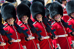The Colonel's Review, the final rehearsal of the Trooping the Colour, the Queen's annual birthday parade, takes place on the mall in Central London.