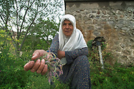 This lovely lady invited me for a cup of tea to her house, that was carved out of a rock thousands of years ago. She lives alone, her family moved to the city years ago. They visit her infrequently, bringing occasional supplies and necessities. At the meantime she grows her own food and has a small yard with cows and goats.