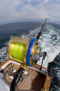 Wide angle view of heavy gold reel.