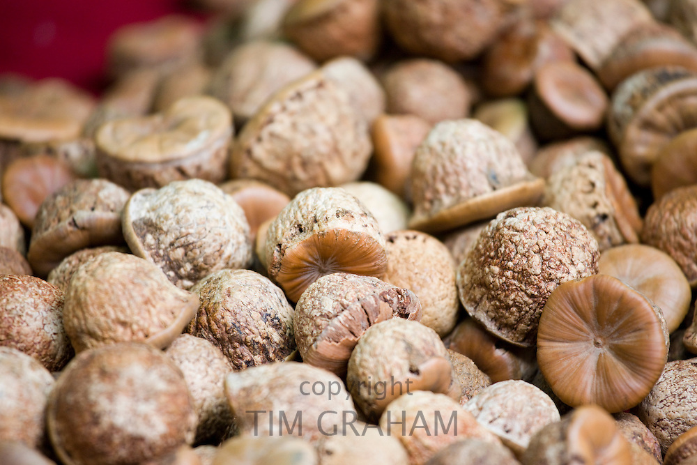 Medicinal nuts for sale in Fengdu, China