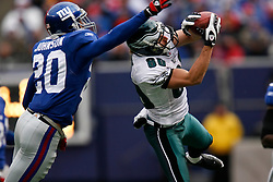7 Dec 2008: Philadelphia Eagles wide receiver Kevin Curtis #80 receives a pass with New York Giants safety Michael Johnson #20 defending during the game against the New York Giants on December 7th, 2008. The Eagles won 20-14 at Giants Stadium in East Rutherford, New Jersey. (Photo by Brian Garfinkel)