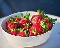 First Fresh Strawberries of the season harvested from the Grow Towers. Image taken with a Leica SL2 camera and 90-280 mm lens.