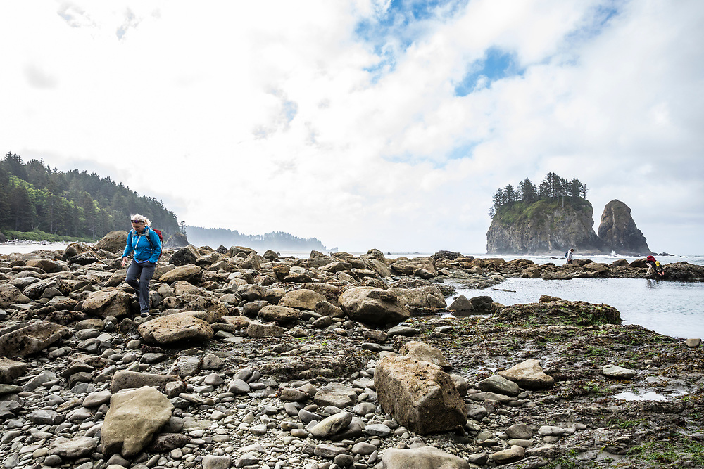 people exploring the tide pools at 2nd Beach at low tide, Olympic Coast National Marine Sanctuary / National Park, Washington, USA.