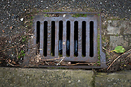 Maintenance Hole- and Drain Covers of Wirral by Colin McPherson, 2020-21.<br /> <br /> A gully cover manufactured by E. Wilson & Co. of Liverpool. Their foundry was situated in the city's Collingwood Street, but the company ceased trading in 1962.