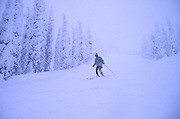 Skiing, Big Mountain, Montana<br />