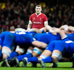 Hadleigh Parkes of Wales<br /> <br /> Photographer Simon King/Replay Images<br /> <br /> Six Nations Round 1 - Wales v Italy - Saturday 1st February 2020 - Principality Stadium - Cardiff<br /> <br /> World Copyright © Replay Images . All rights reserved. info@replayimages.co.uk - http://replayimages.co.uk