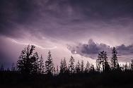 In-Cloud lighting illuminnates cumulonimbus thunderstorm clouds at night, Tahoe National Forest, Sierra County, California