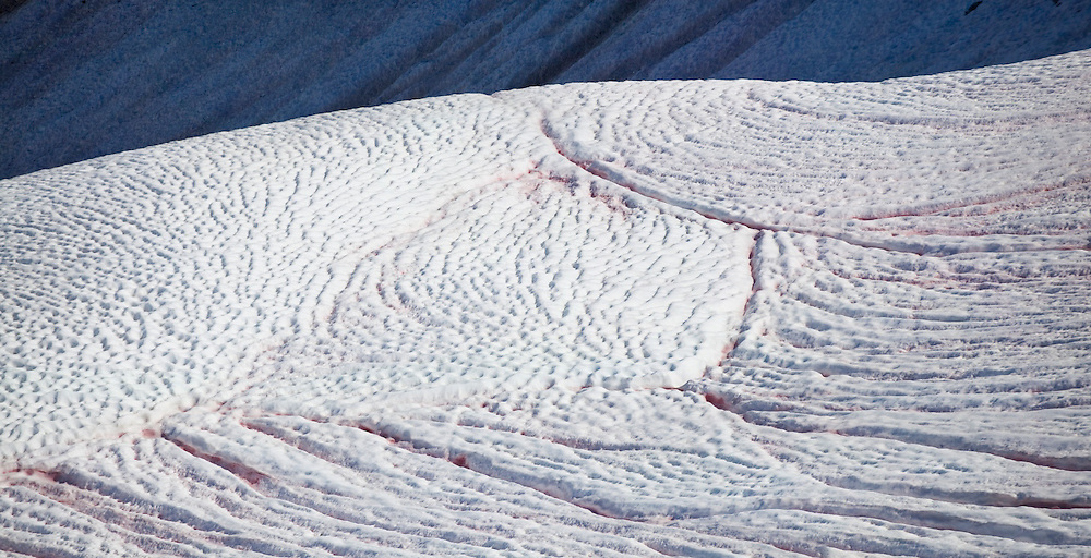 Meltwater grooves in snow near Maple Pass, North Cascades Scenic Highway Corridor, Washington.