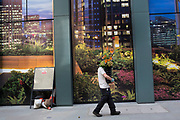 Flower delivery man walks past a  plant covered hoarding in the City of London, UK. As he passes, his flowers blend in with the printed plants picture behind him. Accidental camouflage.