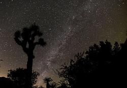 October 2, 2016 - Los Angeles, California, U.S - The Milky Way are seen above the Joshua Tree National Park in Twentynine Palms, California, October 2, 2016. (Credit Image: © Ringo Chiu via ZUMA Wire)