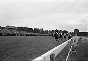 """15/07/1967<br /> 07/15/1967<br /> 15 July 1967<br /> Hennessy Handicap at Leopardstown Races, Leopardstown Racecourse, Co. Dublin.  J.A.N. Glover's """"My Kuda"""" (centre, ridden by T.P. Burns and trained by Aubrey Brabazon, winning the Hennessy Handicap from Michael L. Healy's """"Talgo Abbess"""" (centre behind winner) ridden by L. Johnson and trained by K. Prendergast, with R.S. Reynolds """"Little Hawk"""" (right the rails), third, ridden by G. McGrath and trained by Murless."""