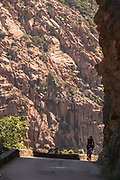 Man on bicycle on road between rocks, Calanches de Piana, Corsica, France