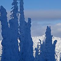 Big Mountain Ski Area, Whitefish, Montana. Snow ghosts at The Big Mountain ski area near Glacier National Park.