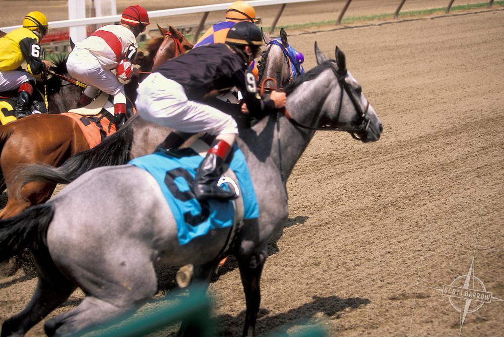 Flat track horse racing.