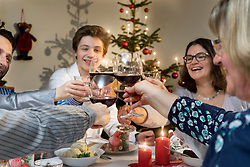 Family clinking wine glasses during Christmas celebration at home