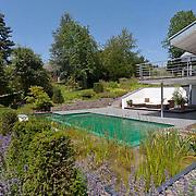 Modern Garden 916